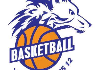 Logo Basketball Villefranchois